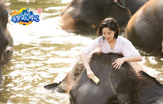 赵奕欢探访泰国大象救助站 亲密接触为大象搓澡刷牙