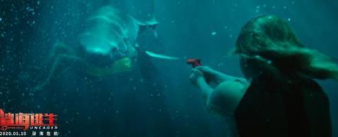 冒险灾难片《鲨海逃生》将映 乖女逆袭人鲨肉搏